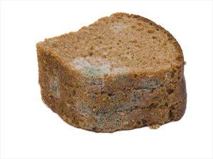 Duonos pelėsis