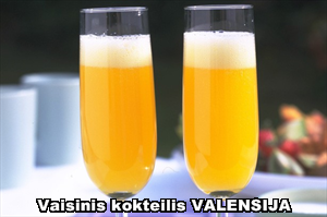 Vaisinis kokteilis Valencia